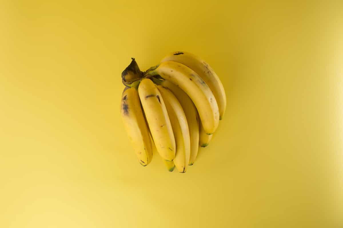 Bananen als Beispielbild für den Divi Page Builder