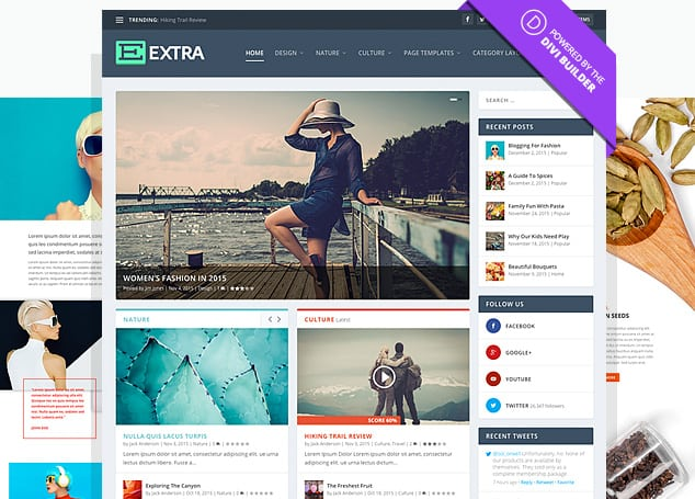 Extra WordPress Theme Ansicht