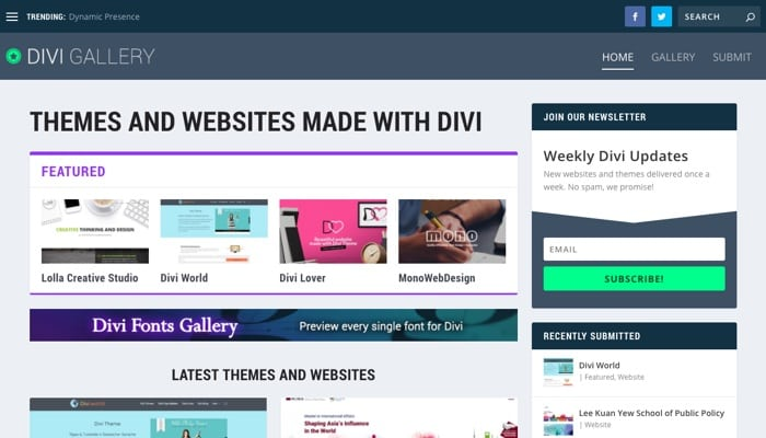 Elegant Marketplace Homepage: Divi Theme Ressourcen