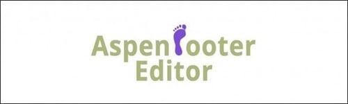 Divi Plugin Aspen Footer Editor Logo