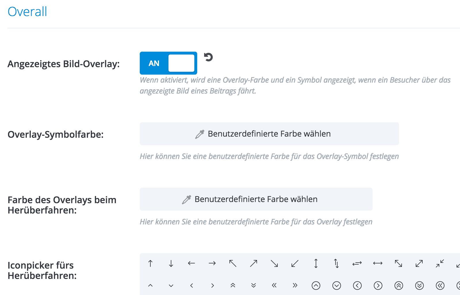 Divi Theme Blog Modul: Einstellungen Overall