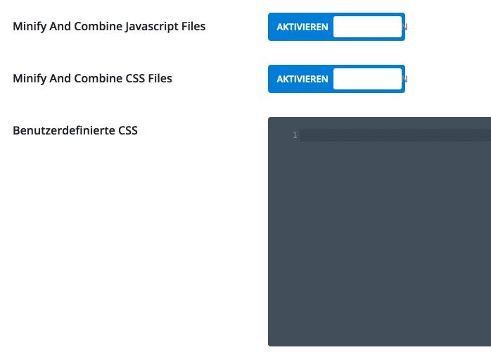 Divi CSS & Javascript Einstellungen