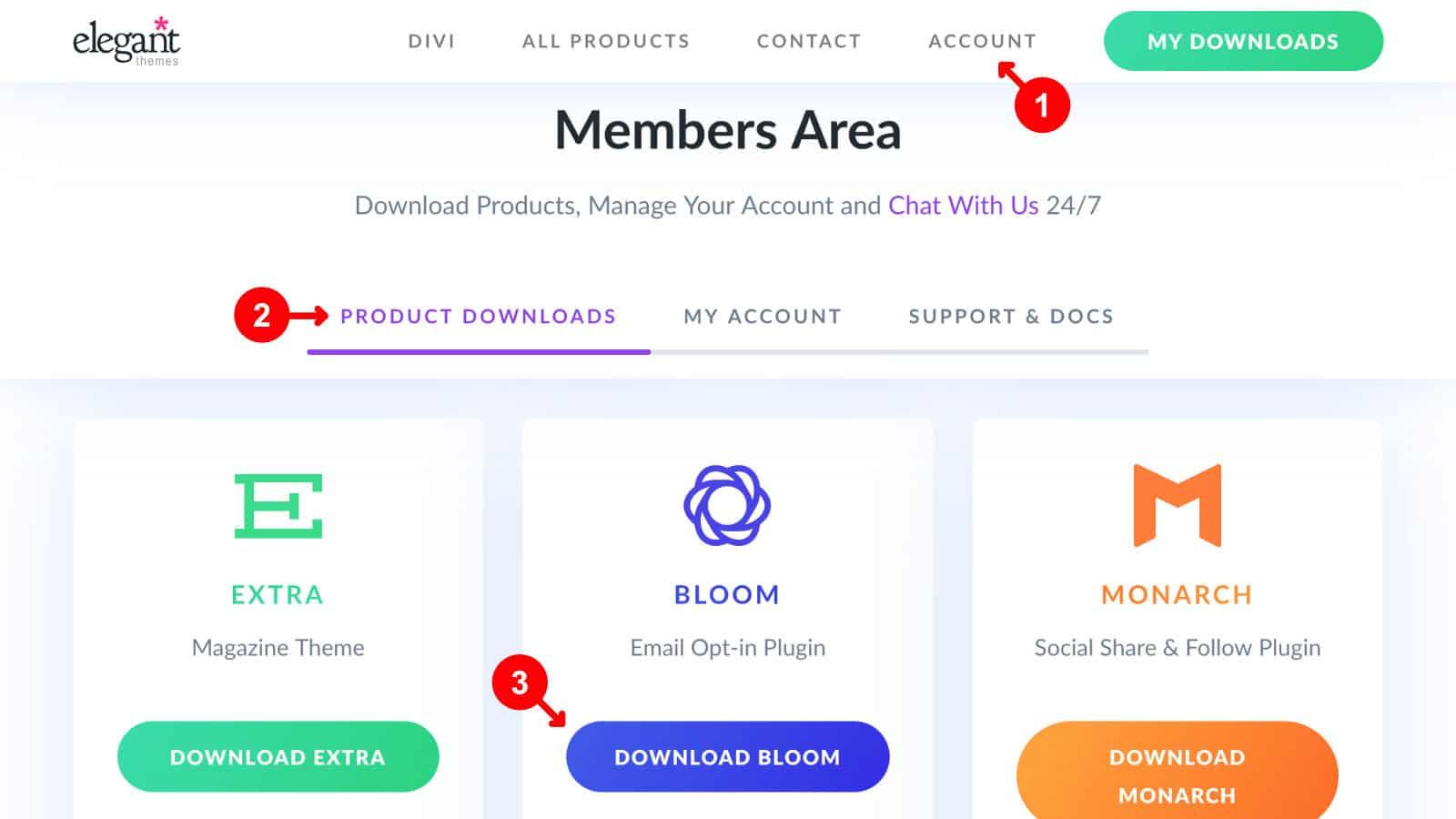Bloom Popup Plugin Test Download