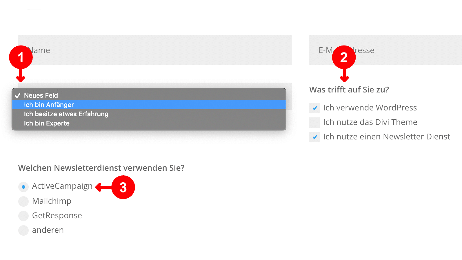 Divi Theme Kontaktformular: Dropdown, Checkbox, Radio Button
