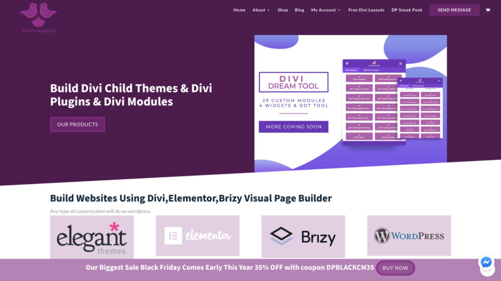 Divi Professional Black Friday Deal